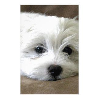 Puppy Eyes Custom Stationery
