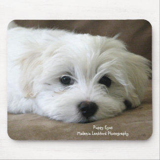 Puppy Eyes Mouse Mat