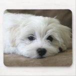 Puppy Eyes Mousepad