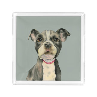 """""""Puppy Eyes"""" Pit Bull Dog Watercolor Painting Acrylic Tray"""