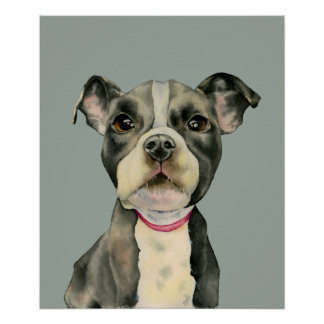 """""""Puppy Eyes"""" Pit Bull Dog Watercolor Painting Poster"""