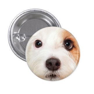 Puppy Face 3 Cm Round Badge