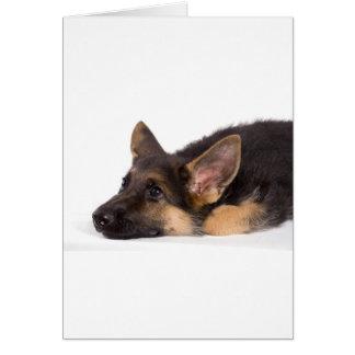 puppy german sheperd greeting card