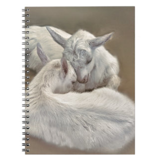 puppy goat in the farm notebooks
