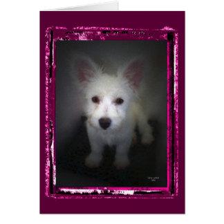 Puppy II Greeting Card