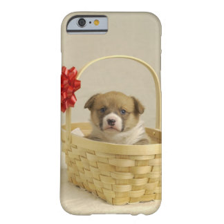 Puppy in a basket barely there iPhone 6 case