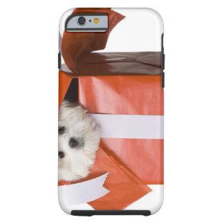 puppy in a box tough iPhone 6 case