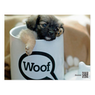 Puppy in a Cup Woof Dog Brown Pet Postcard