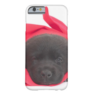 Puppy in blanket barely there iPhone 6 case