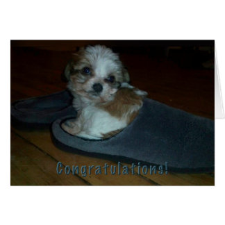Puppy in slipper, congratulations puppy adoption. card