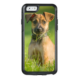 Puppy In The Grass OtterBox iPhone 6/6s Case