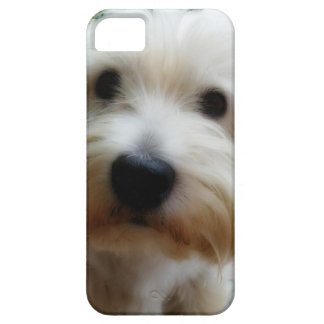 Puppy iPhone 5 cover