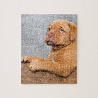 Puppy Jigsaw Puzzle
