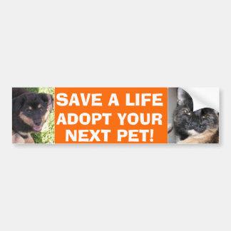 Puppy & Kitty Bumper Sticker