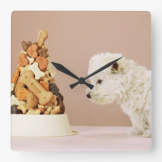 Puppy looking at pile of biscuits in dog bowl square wall clock