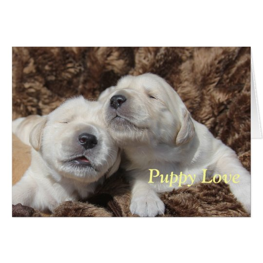 Puppy Love Greeting Card by Focus for a Cause