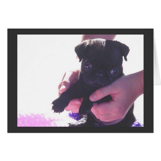 Puppy Love II Card