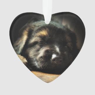 Puppy Love Ornament
