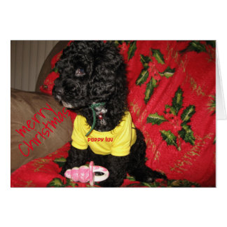 Puppy Luv 4 Christmas Card