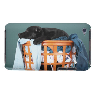 Puppy lying in laundry basket iPod touch cover