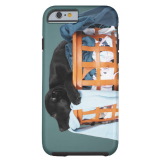 Puppy lying in laundry basket tough iPhone 6 case