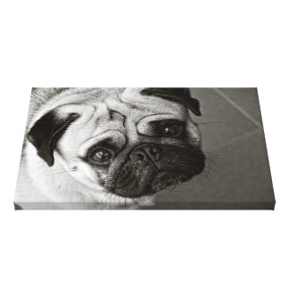Puppy of Pug on linen cloth Stretched Canvas Prints