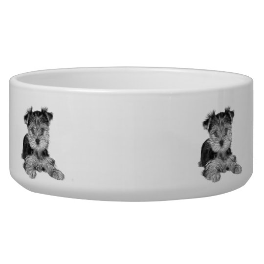 Puppy of the Yorkshire Terrier Dog Food Bowls