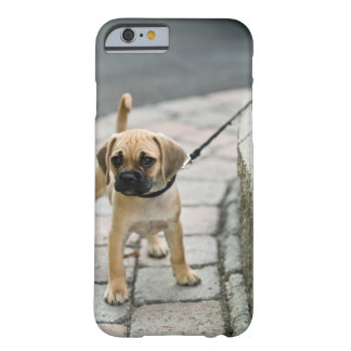 Puppy on leash barely there iPhone 6 case