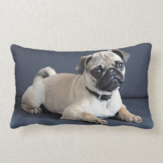 Puppy On Lounging Couch Lumbar Cushion