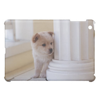 Puppy peeking out from behind a column case for the iPad mini