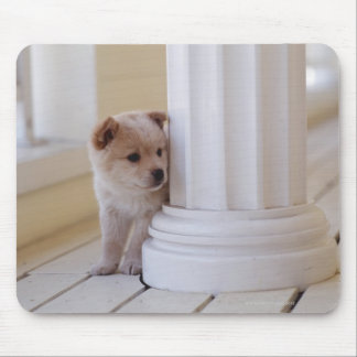 Puppy peeking out from behind a column mouse mat