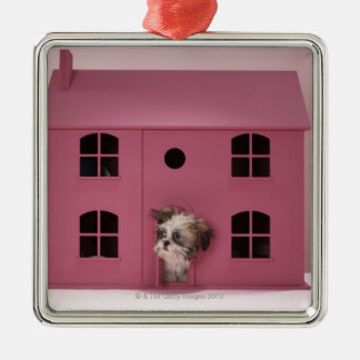 Puppy peering out of doll's house christmas ornament