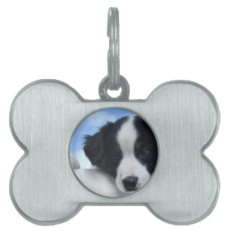 Puppy Pet Name Tag