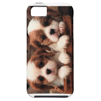 Puppy phonecase iPhone 5 case