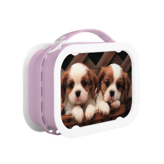 Puppy Pictures 2 Lunchbox