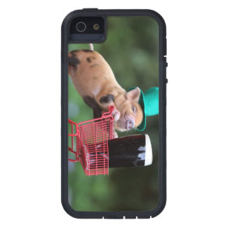 Puppy pig shopping cart iPhone 5 cases
