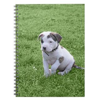 Puppy Pit Bull T-Bone Notebook