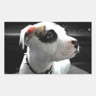 Puppy Pit Bull T-Bone Rectangular Sticker