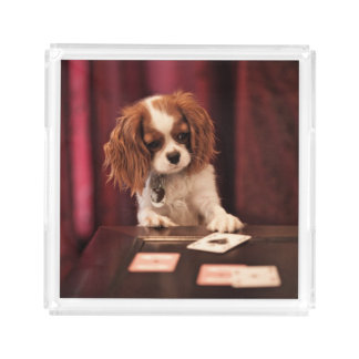 Puppy Plays Cards Acrylic Tray