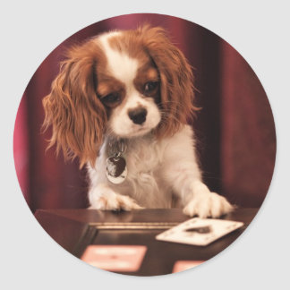 Puppy Plays Cards Classic Round Sticker
