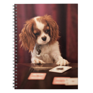 Puppy Plays Cards Notebook