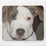 Puppy Polo Mouse Pad
