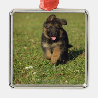Puppy Running Christmas Ornament