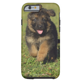 Puppy Running Tough iPhone 6 Case