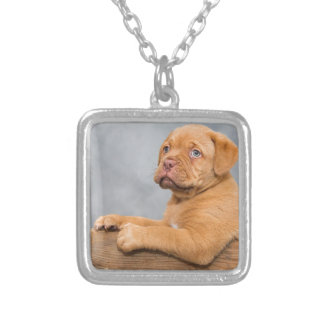 Puppy Silver Plated Necklace