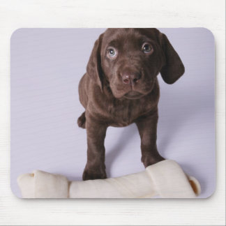 Puppy Sitting by a Bone Mouse Mat