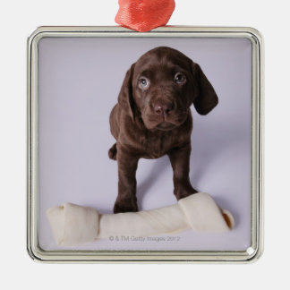 Puppy Sitting by a Bone Silver-Colored Square Decoration