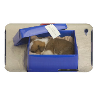 Puppy sleeping in a gift box iPod touch cases