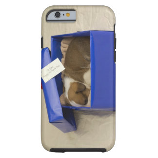 Puppy sleeping in a gift box tough iPhone 6 case