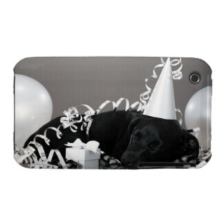 Puppy sleeping in party decorations iPhone 3 case